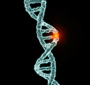 How can gene mutations affect health and development